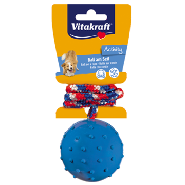 Picture of Dog Toy Ball on Rope natural