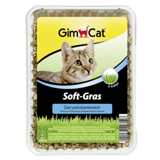 Picture of GimCat Soft-Grass 100g