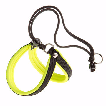 Picture of Agila Fluo 2 Harness Yellow