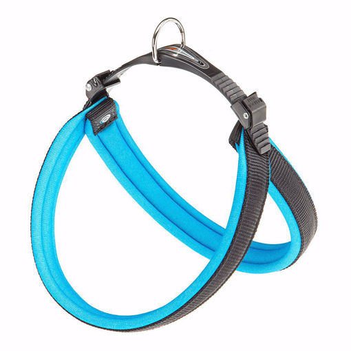 Picture of Agila Fluo 3 Harness Blue