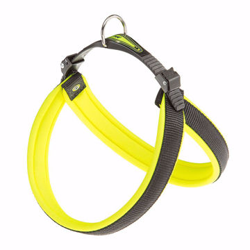 Picture of Agila Fluo 3 Harness Yellow