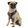 Picture of Nikita P XXS Harness Black