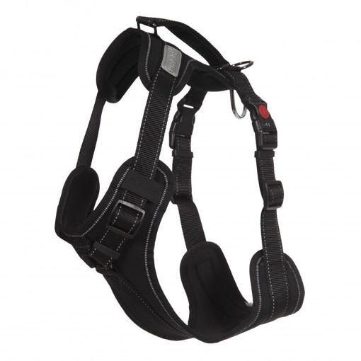 Picture of Solid Harness Black XS