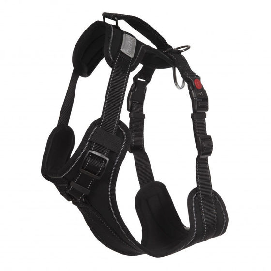 Picture of Solid Harness Black M