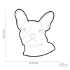 Picture of BLACK AND WHITE FRENCH BULLDOG