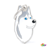 Picture of SIBERIAN HUSKY