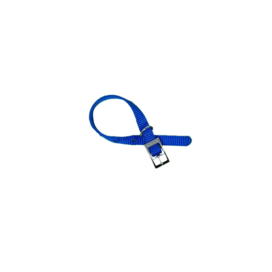 Picture of Nylon collar 12x280mm blue