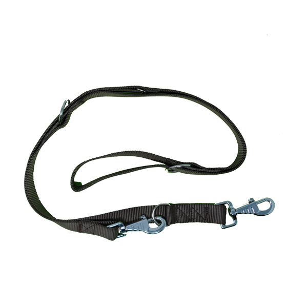 Picture of Double thickness training leash 25x200mm brown