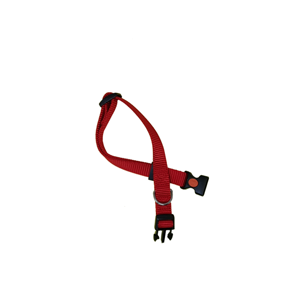 Picture of CA12/25 COLLAR RED