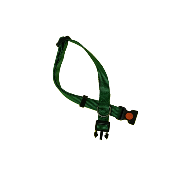Picture of CA18/50 COLLAR GREEN