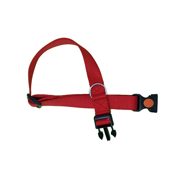 Picture of CA25/65 COLLAR RED