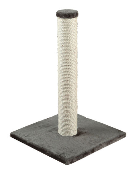 Picture of Parla scratching pole 62cm Gray