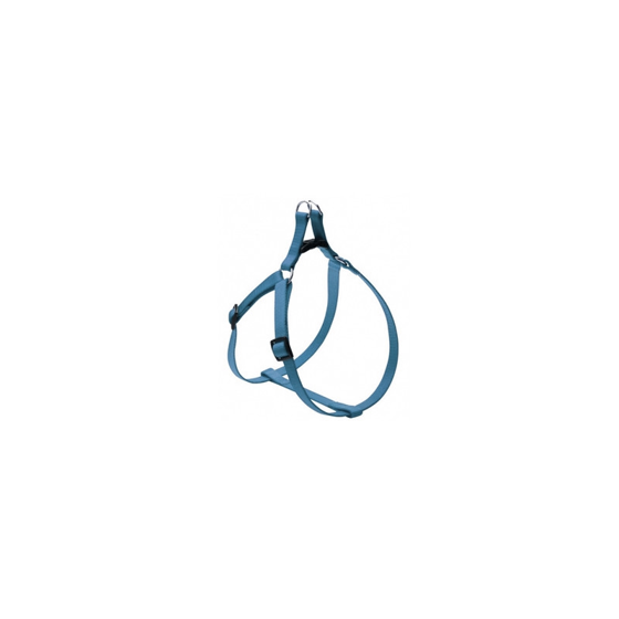Picture of FLASH harness 25mm Teal
