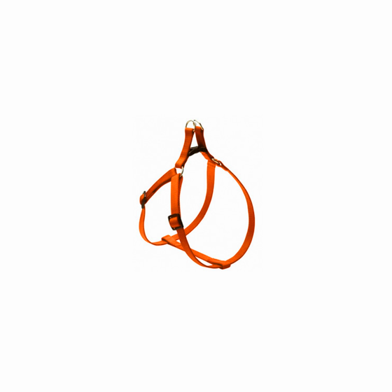 Picture of FLASH harness 18mm Orange