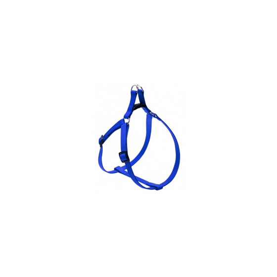Picture of FLASH harness 12mm Blue