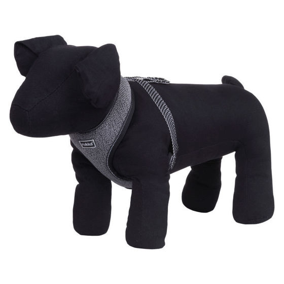 Picture of Star Mini Harness Large