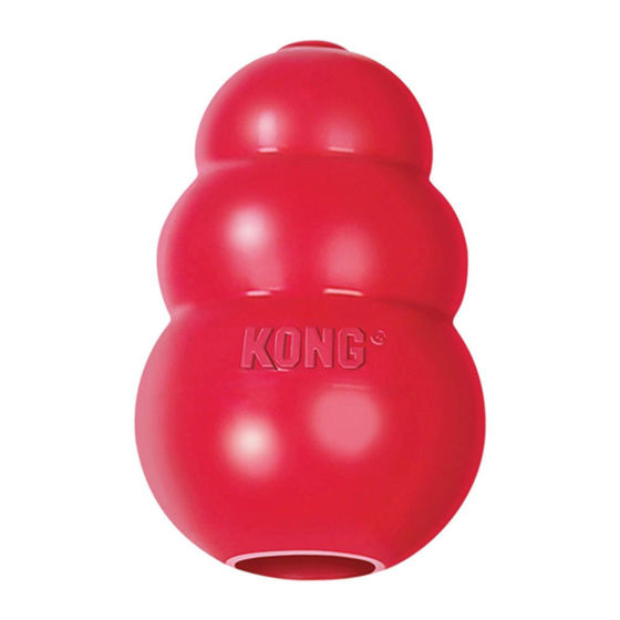 Picture of KONG Classic x-small