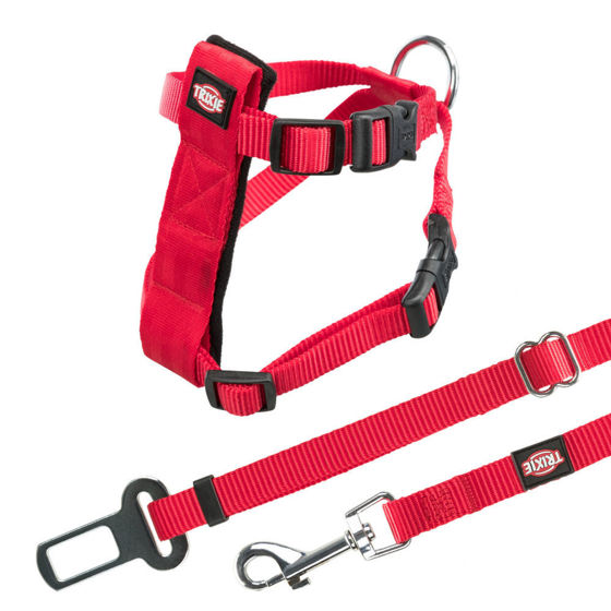 Picture of Car Harness for Cats