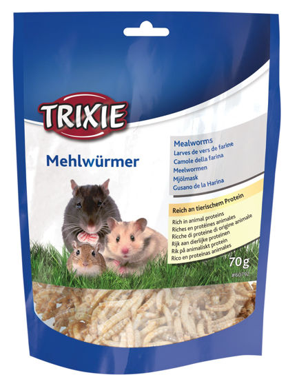 Picture of Mealworms dried 70g