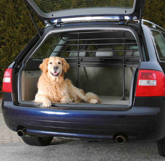 Picture of Car dog guard, black