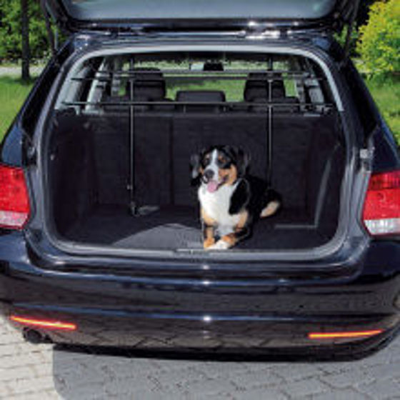 Picture of Car dogguard angled black