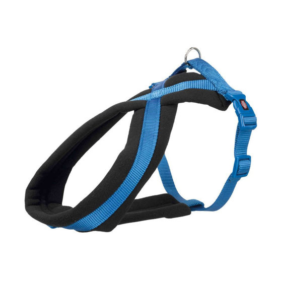 Picture of Premium touring harness M 45-80cm/25mm blue
