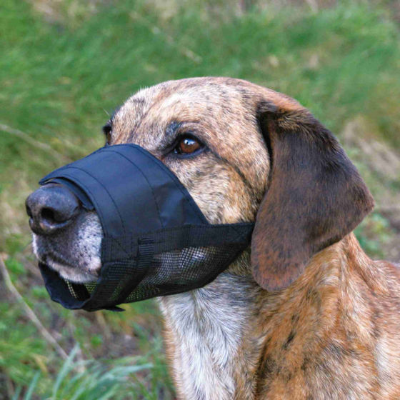 Picture of Muzzle,net insert polyester S black