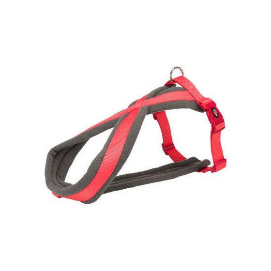 Picture of Premium touring harness M-L 50-90cm/25mm coral