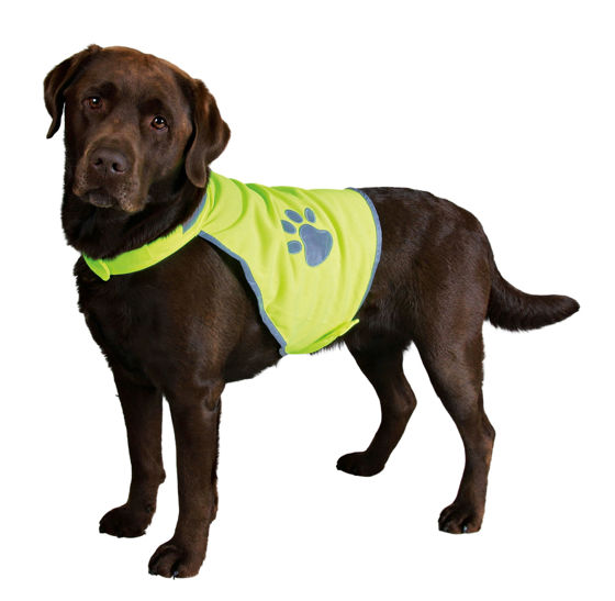 Picture of Safty vest for dogs s