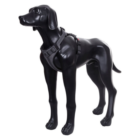 Picture of Star Padded Harness Black - Koko XL