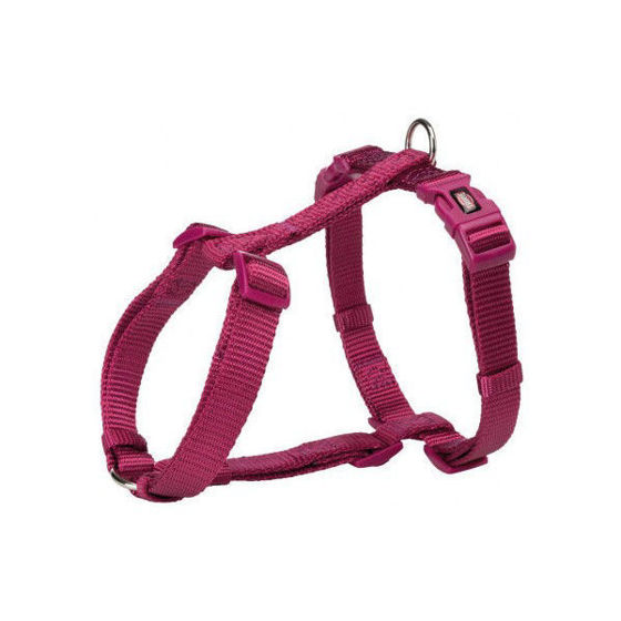 Picture of H-harness S 30-44cm/10mm orchid