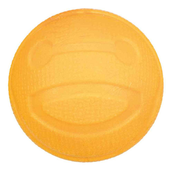 Picture of Aqua Toy ball floatable TPR 6 cm