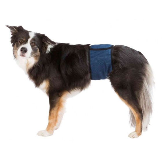 Picture of Belly band for male dogs S-M 37-45 cm Dark Blue