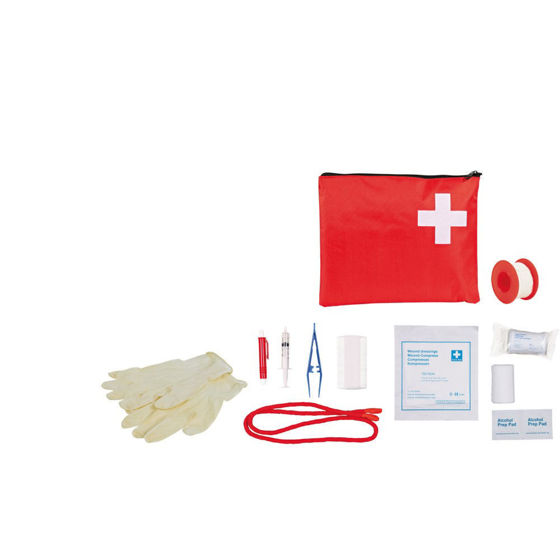 Picture of First Aid Kit for cats and dogs