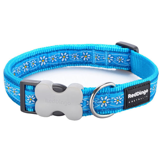 Picture of Cat Collar Daisy Chain Turquoise
