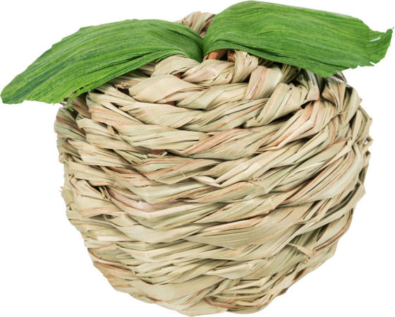 Picture of Apple with maize husk grass 7cm