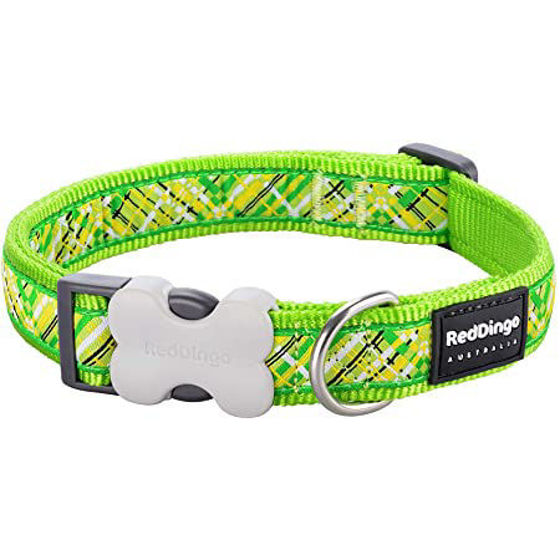 Picture of Dog Collar Design Flanno Lime Green XS