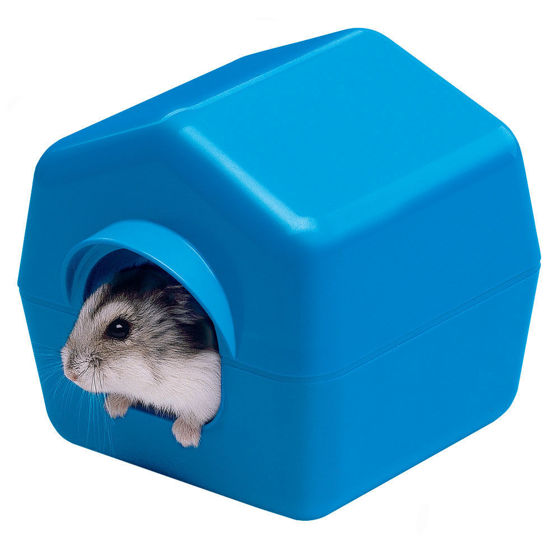 Picture of ISBA 4638 Hamster House