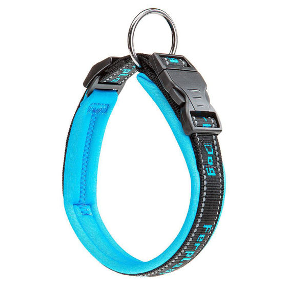 Picture of SPORT DOG C25/55 Collar - Blue
