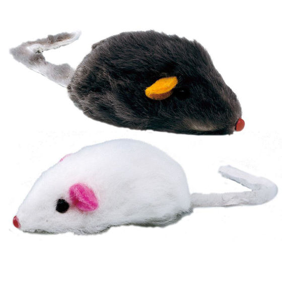 Picture of PA 5004 TOYS FOR CATS (x2)